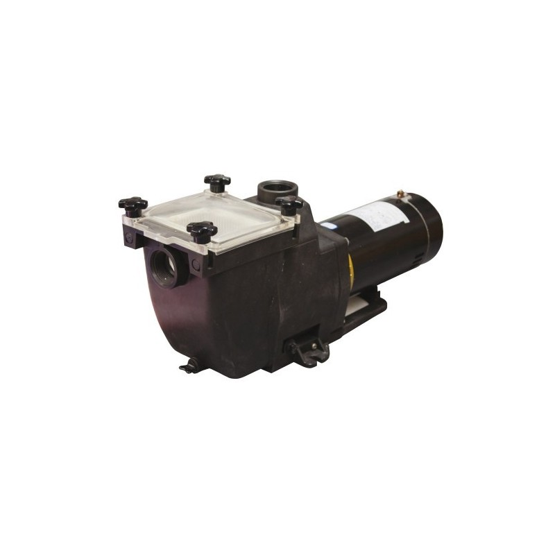 TidalWave 1 HP Replacement Pump For In-Ground Pools (NE8151)