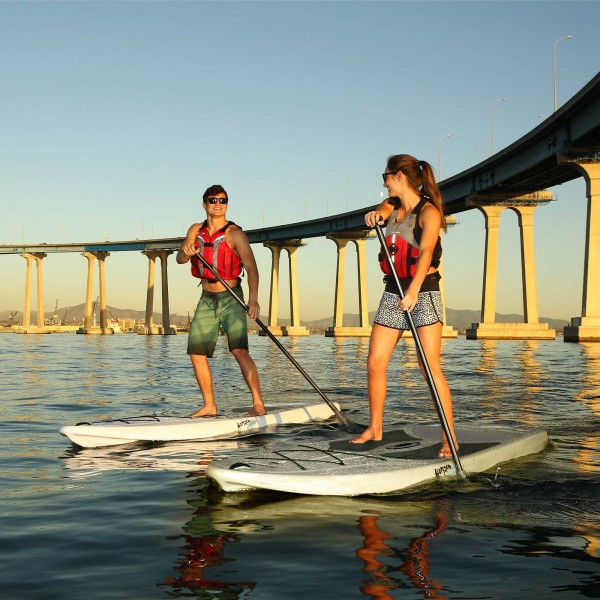 Lifetime 2 Pack 10 Ft Horizon Paddleboards W Paddles