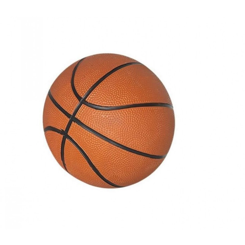7 In. Mini Basketball (NG2213)