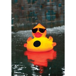 Blue Wave Derby Duck Solar Light Up Pool & Spa Chlorinator (NA3394)