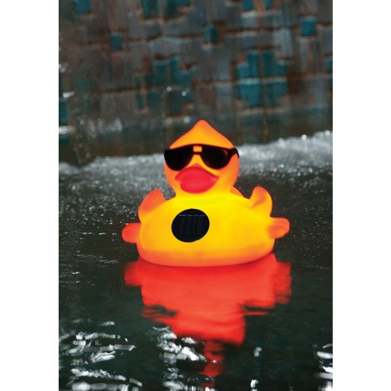 Blue Wave Derby Duck Solar Light Up Pool & Spa Chlorinator (NA3394)