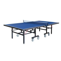 Back Stop Table Tennis Table (NG2310P3)