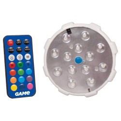 Blue Wave Remote Control LED Color Changing Pool Wall Light (NA4109)