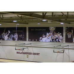 Gared Direct Mount Stationary Wall Mount Basketball Backstop, 2'-3' Length (2350-2034A)