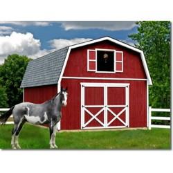Best Barns Roanoke 16x28 Wood Storage Shed Kit (roanoke1628)