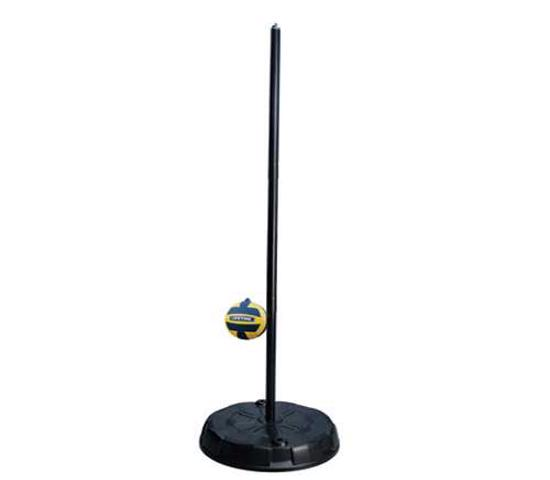 Lifetime Portable Tetherball Kit - Black Pole (90029) - Provides your family with a lot of fun in a small amount of space.